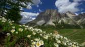 dolomites : Gimbal shot of Dolomites Mountains during a summer day in Falzarego Pass. Alps, Italy. 4K, UHD
