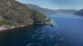 aquaculture : Aerial shot of a fish farm in Norway. 4K, UHD