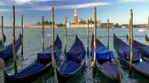 encadernado : Venice, Italy. Docked gondolas covered with blue canvases swaying in the waves. St. Marks Basilica is seen in the background. UHD Stock Footage