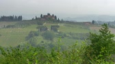 виноградник : Panorama of classical Tuscany landscape. Hills covered with mist. Tuscany is a region in Italy, where Florence, Pisa, Siena, San Gimignano etc are located. UHD