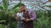 crescente : Dolly shot of Young couple florists work in garden center. Attractive man and woman count flowers using tablet computer during working in greenhouse