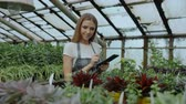 fazenda : Dolly shot of Young woman working in garden center. Attractive girl check and count flowers using tablet computer during work in greenhouse Stock Footage