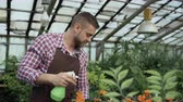 horticultura : Attractive man gardener in apron watering plants and flowers with garden sprayer in greenhouse Stock Footage