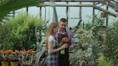 florista : Attractive couple work in greenhouse. Man gardener in apron watering plants and flowers with garden sprayer while his girlfriend talking to him Vídeos