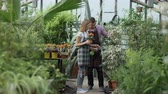 employee : Attractive couple work in greenhouse. Man gardener in apron watering plants with garden sprayer while his girlfriend talking to him