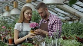 zahradník : Attractive couple work in greenhouse. Young woman and man florists in apron talking and discussing about flowers