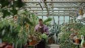 ботаника : Confident male gardener watering plants at greenhouse with pot. Attractive young man enjoy his job in garden
