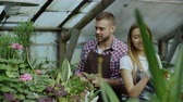 horticultura : Young cheerful man in apron watering plant and chat with woman in gloves loosen ground in flowers in greenhouse