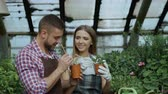 horticultura : Young cheerful man worker in apron chatting with woman in gloves and loosen ground in flowers in greenhouse Stock Footage