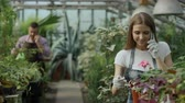 зелень : Young cheerful woman in apron and gloves talking phone while gardening plants and loosen ground in flower in greenhouse