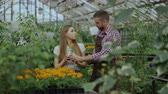 horticultura : Young cheerful man florist talking to customer and giving advice while working in garden center Stock Footage
