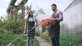 lixo : Attractive couple work near greenhouse. Man gardener in apron collect garbage in garden while his wife talking him holding box with flowers