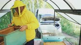 mel : Beekeeper man watering wooden frame with sprayer and set up in beehive in apiary Vídeos