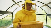 cera de abelha : Steadicam shot of beekeeper man walking with wooden frames working in apiary