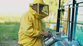 cera de abelha : Stedicam shot of Young beekeeper man smoking bees away from beehive in apiary