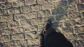 mozaik : Top view POV of man in shoes walking at historical ancient sidewalk