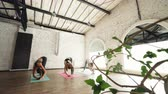 teto : Side view of female yoga students doing stretching exercises and forward bend poses. Modern loft style studio with white walls and high ceiling is visible.