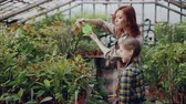 spraying : Cheerful female gardener is sprinkling water on plants and having fun with her adorable little daughter. Growing flowers, people and family concept. Stock Footage