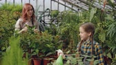 umidade : Beautiful child is sprinkling water on pot plants under guidance of her mother professional gardener. Happy childhood, helping parents and gardening concept.