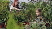 зелень : Cheerful little girl is spraying water on pot flowers while her mother is working in greenhouse and talking to her. Family business, farming and childhood concept.