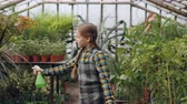 зелень : Pretty girl is walking in greenhouse and spraying water on greenery while her busy mother is working in background. Childhood, helping parents and family concept.