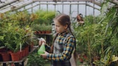 umidade : Daughter of greenhouse owner is helping her mother in workplace sprinkling water on seedlings and flowers in hothouse while her mom is working in background. Vídeos