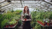 vegetação : Portrait of beautiful young woman farmer in apron standing inside greenhouse, holding pot plant and smiling. Orcharding, people and growing flowers concept.