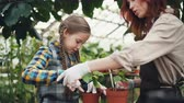 spades : Caring mother professional gardener is teaching her daughter to hoe soil in plant pot with small shovel and talking to child. Growing flowers and happy family concept. Stock Footage