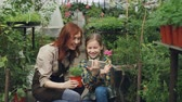 zahradník : Smiling young woman and her cute child are using smartphone, touching screen and laughing inside greenhouse. Modern technology, happy family and people concept. Dostupné videozáznamy