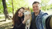 cachorro : Point of view shot of married couple taking selfie with pet shiba inu dog, young people are talking, laughing and caressing the animal while looking at camera.