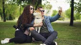 cachorro : Handsome young man is taking selfie with his pretty wife and cute dog, all wearing sunglasses. Guy is holding smartphone taking pictures and posing.