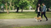 shiba : Cheerful young couple man and woman are walking the dog in the park near sports ground, people are holding hands, guy is leading the animal. Urban life and pets concept. Stock Footage