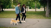 shiba : Slow motion of happy modern young people walking cute small dog in park and laughing. Girl and guy are wearing modern clothes jeans and sunglasses. Stock Footage