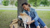 attention : Loving African American girl student is stroking lovable shiba inu dog, caressing the animal sitting under the tree in city park. Young woman is wearing denim jacket and jeans. Stock Footage