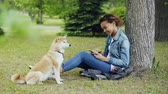 shiba inu : Side view of pretty mixed race girl using smartphone relaxing in park under tree while her cute shiba inu dog is sitting near her owner and enjoying nature.
