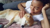 prazer : Beautiful shibe inu puppy enjoying love and care while its tender owner attractive African American girl is stroking it looking with tenderness at her adorable pet.