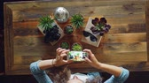 take pictures : Creative photographer is using smartphone to take flat lay pictures of plants, camera and sunglasses on wooden table, woman is touching screen and photographing.