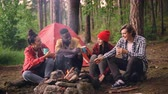 tenda : Cinemagraph loop - multiethnic group of friends girls and guys are sitting in forest around fire with drinks clinking glasses and smiling, smoke is going up.
