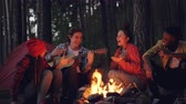 canção : Cinemagraph loop - young man tourist is playing the guitar while his friends are singing and laughing sitting around fire in the wood in the evening enjoying nature and company. Vídeos