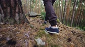 expedição : Low angle view of male tourists legs walking in forest on grass among trees stepping on rocks and pine cones. Trekking footwear, people and adventures concept.