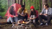 lenha : Multiethnic group of friends tourists are sitting around fire talking and laughing, young man is throwing firewood in flame. Camping, friendship and nature concept. Stock Footage