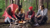 prazer : Young men and women travelers are sitting around fire, telling stories and laughing, handsome guy is throwing firewood in flame. Tent and backpacks are visible. Stock Footage