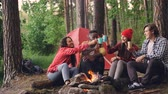diverse : Carefree tourists are toasting, clinking glasses with hot drinks then drinking sitting around fire in forest near tent. Friendship, recreation and youth concept.