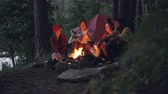 eğlenceli : Male tourist is playing the guitar while his relaxed friends are listening and throwing firewood in campfire sitting together near tent in forest. Music and friendship concept. Stok Video