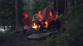 acústico : Girls and guys friends are singing songs while guitarist is playing musical instrument sitting near fire in forest and enjoying nature and music. Tent and lake are visible.