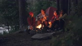 eğlenceli : Cheerful travelers are singing songs and playing the guitar sitting around fire in forest in the evening and having fun with beautiful nature around. People and music concept.
