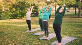 instrutor : Slender young ladies are practising yoga outdoors in park under guidance of experienced teacher, woman is speaking and showing poses, class is repeating after her. Stock Footage