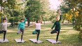 posture : Slim young women are doing variations of Tree pose during yoga class outdoors in park relaxing and enjoying nature and activity. Sports and health concept.