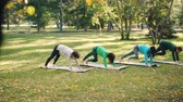 posture : Pretty girls sportswomen are practising yoga outdoors in city park doing exercises on bright mats wearing sports clothing. Nature, well-being and activity concept.