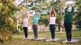 назад : Group of girls is practising yoga outdoors in city park on autumn day, women are standing on mats and bending backward then forward. People and recreation concept. Стоковые видеозаписи